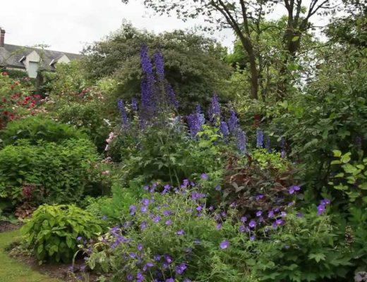 Remerciement rapport de stage les mentions faire figurer - Comment agencer son jardin ...