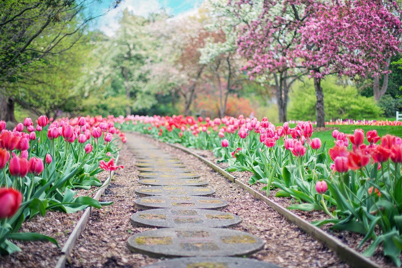Mon jardin sera un endroit de tranquillité et de repos.